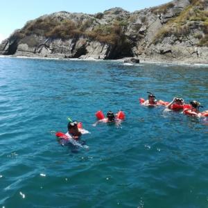 Snorkeling en el parque Nacional Marino Ballena